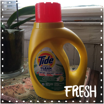 Photo of Tide Simply Clean And Fresh Liquid Daybreak Fresh Laundry Detergent uploaded by Jill R.