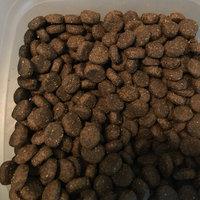 Phillips Feed & Pet Supply Zignature Trout & Salmon Formula uploaded by Lynn B.
