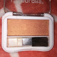 L.A. Colors Professional Series Blush with Applicator uploaded by Denise G.