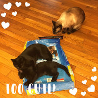 Purina Cat Chow Cat Food Complete uploaded by Kari G.