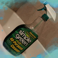 Simple Green 13002 16 oz All Purpose Cleaner uploaded by Maira J.