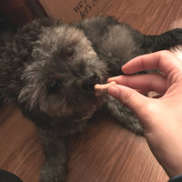 Milk-Bone Mini's Peanut Butter Flavor Dog Treats Variety Pack - 15 oz uploaded by luisse m.