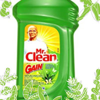 Mr. Clean Febreze Meadows & Rain Scent Multi-Purpose Cleaner 40 oz uploaded by Eng L.
