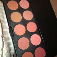 BH Cosmetics Professional Blush uploaded by Amy R.
