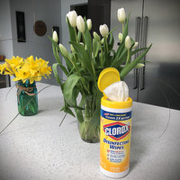 Clorox Disinfecting Wipes uploaded by 🌼Hermine-Jane 🌼.