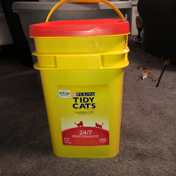 Photo of Purina Tidy Cats 24/7 Performance Clumping Litter for Multiple Cats uploaded by Amy G.