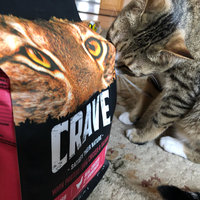 Mars Petcare Crave Grain Free Dry Cat Food with Protein From Chicken Bag, 10 lb uploaded by Teodora D.