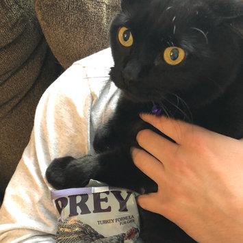 Photo of Taste of the Wild PREY Turkey Formula for Cats uploaded by McKenzie B.