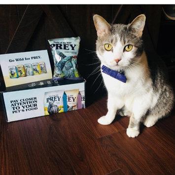 Photo of Taste of the Wild PREY Turkey Formula for Cats uploaded by Jennifer K.