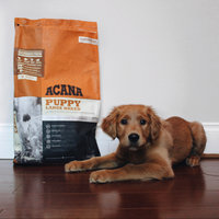 Acana Large Breed Puppy Food 13kg uploaded by Sophie G.