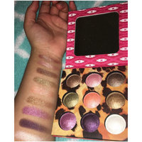 BH Cosmetics Wild Baked Eyeshadow Palette uploaded by Amber R.