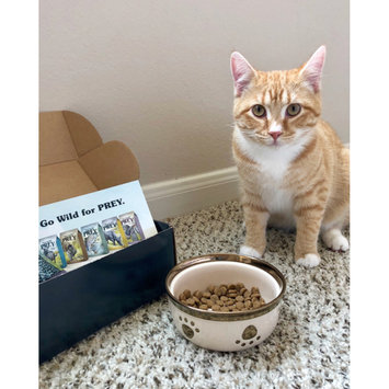 Photo of Taste of the Wild PREY Turkey Formula for Cats uploaded by Silvia ♡.
