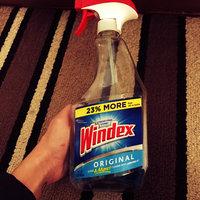 Windex Original Glass Cleaner Spray uploaded by Diana R.