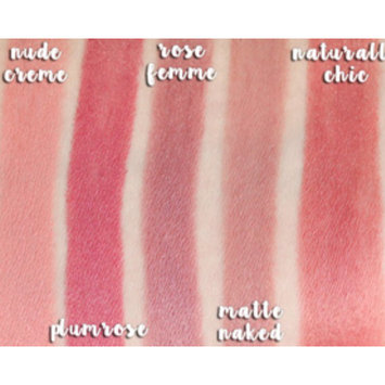 Photo of Milani Matte Color Statement Lipstick uploaded by Sarah P.