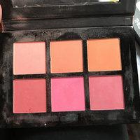 Profusion Cosmetics Studio Blush Palette 6 Color Blush uploaded by Danielle B.