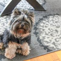 Royal Canin® Yorkshire Terrier 28™ Adult Dog Food 10 lb. Bag uploaded by Praveeni P.