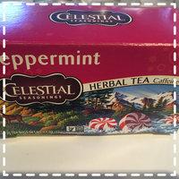 Celestial Seasonings® Peppermint Herbal Tea Caffeine Free uploaded by Berneta A.