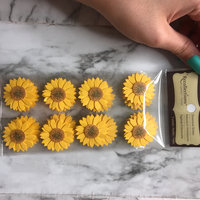 Signature Sunflower Stickers by Recollections uploaded by Amanda C.