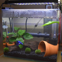 Zoo Med Laboratories AZMBL20 Betta Bed Leaf Hammock uploaded by Abby B.