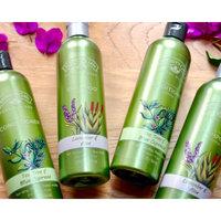 Nature's Gate Shampoo uploaded by Karina P.