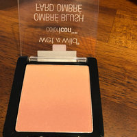 wet n wild ColorIcon Ombré Blush uploaded by Dale J.