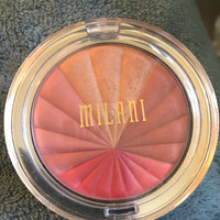 Milani Color Harmony Blush Palette uploaded by Denise H.