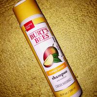 Burt's Bees Super Shiny Mango Shampoo uploaded by LaJayla S.