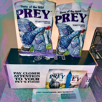 Photo of Taste of the Wild PREY Turkey Formula for Cats uploaded by Jenna Q.