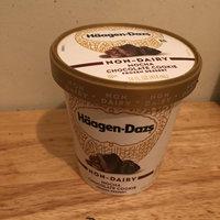 Haagen-Dazs Mocha Chocolate Cookie Non-Dairy Frozen Dessert uploaded by Monique G.