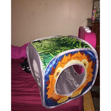 Photo of Sportpet Design Sportpet Lion Play Cube uploaded by Taylor F.