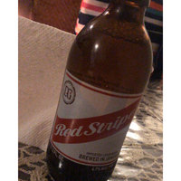 Red Stripe Jamaican Lager Bottles 11.2 oz uploaded by Angymer D.