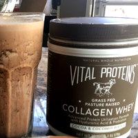 Vital Proteins Vital Organic Whey uploaded by Jamie L.