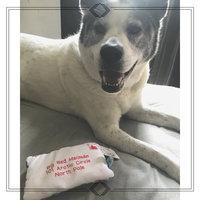 BarkBox uploaded by Lyndsay V.