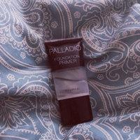 Palladio Foundation Primer uploaded by Ashtyn J.