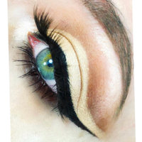 Pretty Vulgar The Ink Gel Eyeliner uploaded by Bethany W.