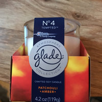Glade Candle, No 4 Tempted, 4.2oz, Blue uploaded by Amber b.