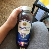 GT's Raw Organic Kombucha Gingerberry uploaded by Aurangel D.