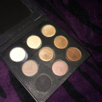 MAKE UP FOR EVER  9 Artist Shadows Palette: Artist Shadows 1 uploaded by Alexis B.