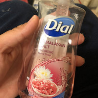 Dial® Antibacterial Hand Soap Himalayan Pink Salt uploaded by victoria R.