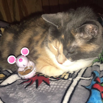 Photo of TEMPTATIONS™ Snacky Mouse Cat Toy uploaded by Elizabeth R.
