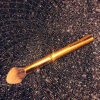 Morphe Y1 Precision Pointed Powder Brush uploaded by Hooria K.