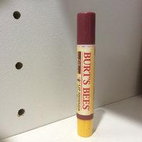 Burt's Bees Lip Shimmer uploaded by Celeste G.