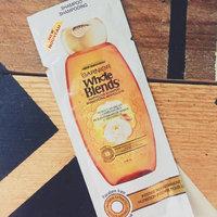 Garnier Whole Blends Moroccan Argan & Camellia Oils Extracts Illuminating Shampoo uploaded by Melisa C.