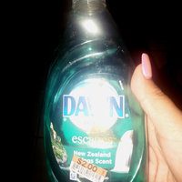 Dawn Escapes Dishwashing Liquid New Zealand Springs uploaded by Julie C.