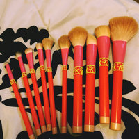 Sonia Kashuk Limited Edition 10pc Brush Set - Color Shock uploaded by Nataly R.