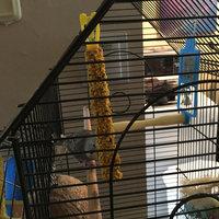 Menu Bird Treat Sticks, 3.8 oz uploaded by Sadie P.