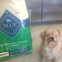 THE BLUE BUFFALO CO. BLUE™ Life Protection Formula® Lamb and Brown Rice Recipe For Adult Dogs uploaded by Leah R.