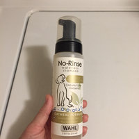 Wahl No-Rinse Oatmeal Formula Coconut Lime Verbena Pet Waterless uploaded by Brittany A.