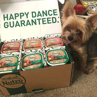 Nutro Natural Choice Adult Dog Food Beef & Potato Slices in Gravy uploaded by Jen F.