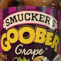 Smucker's Goober Peanut Butter & Grape Jelly Stripes uploaded by Yajaira E.